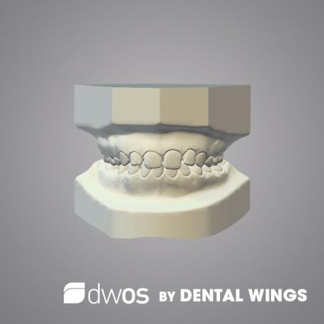 Orthodontic Archiving